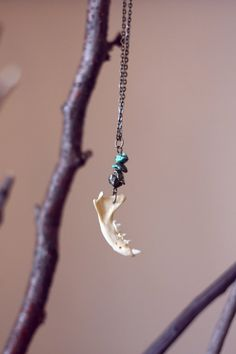 Jawbone, Pyrite & Turquoise Necklace. Chomp chomp.