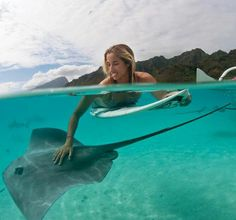 Surfing and making friends with the Sting Rays