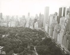 Andy Warhol, Central Park and Manhattan Skyline
