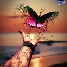 Prophetic art butterfly, freedom, fly dear one, fly! Butterfly Quotes, Butterfly Pictures, Butterfly Art, Butterfly Kisses, Cute Wallpapers, Wallpaper Backgrounds, Prophetic Art, Butterfly Wallpaper, Beautiful Butterflies