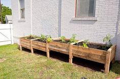 This incredibly easy DIY pallet container raised garden bed looks chic and is just right for a small kitchen garden