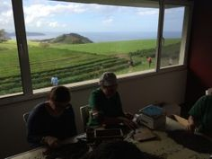 Seleção à mão do Chá #Gorreana sorting tea in azores islands. With a view!