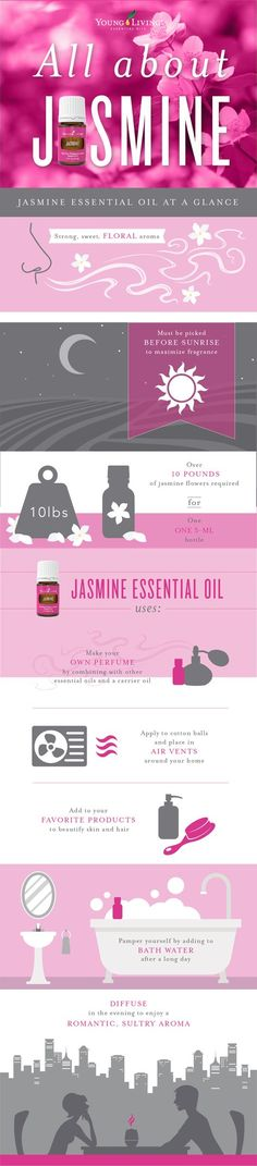 All About Jasmine Infographic ~Kim, YL#1146129