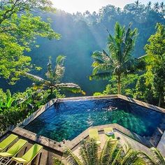 Tag who you'd swim with 🏊 ••••••••••••••••••••••••••••••••••••••••••••••••••••••• Congratulations🌟@TimothySykes 🌟 with this photo taken in Bali, Indonesia 🌴 Check him out for the Millionaire Lifestyle✨ •••••••••••••••••••••••••••••••••••••••••••••••••••••••