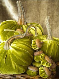 Velvet PUMPKINS & Velvet ACORNS  Real Pumpkin Stems