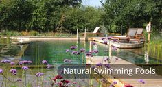 "Natural Pools Our Natural Pools are built using our partner Biotop's award-winning ""Natural Pool System""."