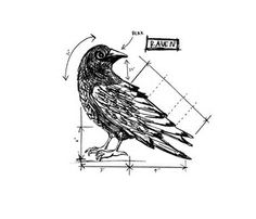 Tim Holtz Rubber Stamp RAVEN SKETCH Stampers Anonymous U2-2175