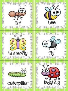 Read, Write, and Count the Room {Literacy an Kindergarten Science, Preschool Classroom, Preschool Bug Theme, Insect Activities, Preschool Activities, Bugs And Insects, Math Centers, Pre School, Count