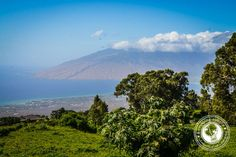View from Upcountry Maui Hawaii: Every wanderluster needs to see these gorgeous pics!
