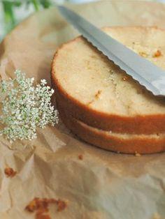 Leivonta - Kakkupohja - Vaniljakakkupohja
