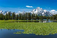 Heron Pond and the Teton Range (Wyoming) by Ken Carper on 500px