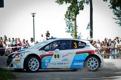 Paolo Andreucci in a Peugeot 208 T16 at 2014 Rally del Friuli
