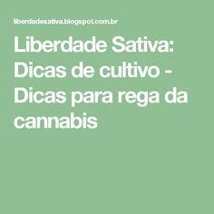 Liberdade Sativa: Dicas de cultivo - Dicas para rega da cannabis