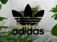 Adidas is bae Adidas Iphone Wallpaper, Good Brands, Adidas Design, Adidas Baby, Adidas Fashion, Just Do It, Editorial Design, Adidas Logo, Find Image