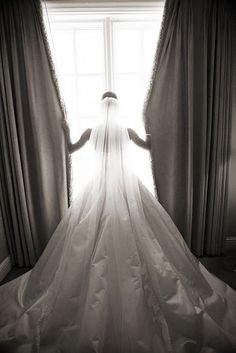 Amsale Ella wedding gown, beautiful photo. so cool!