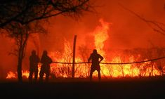 'Total destruction': why fires are tearing across South America   Environment   The Guardian