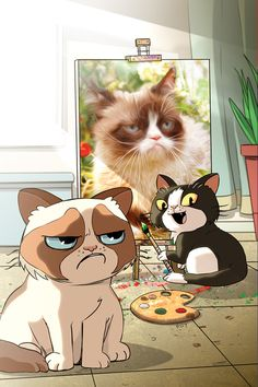 Grumpy Cat Wallpapers Hd Wallpapers 4k Pinterest Grumpy Cat