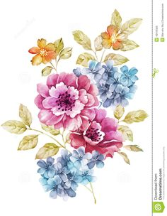 Watercolor Illustration Flower In Simple Background Stock Illustration - Image: 43419326
