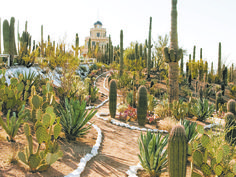 8 quirky, odd or peculiar Arizona attractions
