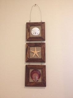 3 frame decorative piece with sand dollar by SeaToLandDesigns, $20.00