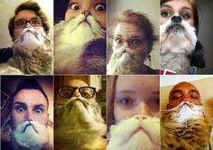 Funny Animal Selfies - DIY bearding with cats and dogs. CUTE! From www.dazeddigital.com