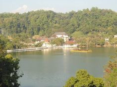 Intera casa/apt a Kandy, LK. Can see royal palace / kandy lake  and mountain ranges from the apartment . walking distance to  kandy city . Walking distance to famous restaurants..free breakfast include Bread / jam /Butter/ milk and fruits.large family bed room with AC.   Can ...