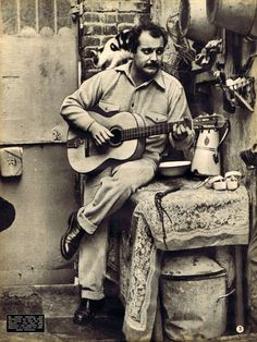 almost famous cats Art Music, Music Artists, Photo Star, Street Musician, Celebrity Stars, Jazz Musicians, A Star Is Born, Cat People, World Music