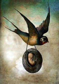Ilustraciones Mágicas de Catrin Welz-Stein