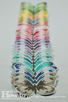 In unserem heutigen How to... möchte ich euch verschiedene Farbkombinationen für das Stempelset Watercolor Wings vorstellen.