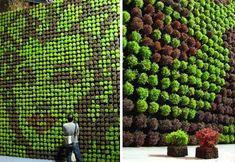 mossy-marilyn-monroe-wall