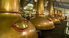 Laphroaig Single Malt Whisky - Visiting