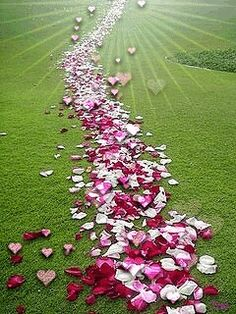 Petals for Every Occasion - Retirement Parties Beautiful Gif, Beautiful Flowers, Beautiful Pictures, Gif Bonito, Heart Gif, Way To Heaven, Rose Images, I Love My Wife, Animation