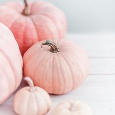Printable Wall Art - Printable wall decor and poster prints for your home I'm dreaming of pretty pastel pink pumpkins. Who says that Halloween needs to be traditional orange and black? I'm all for adding pink this year. Pink Pumpkins, Fall Pumpkins, Jack Skellington, Pretty Pastel, Pastel Pink, Pumpkin Wallpaper, Pink Halloween, Happy Halloween, Haunted Halloween