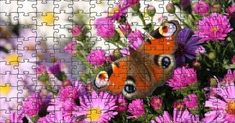 Online puzzle - 60 pieces Peacock Butterfly, Free Online Jigsaw Puzzles, Wallpaper, Flowers, Wallpapers, Royal Icing Flowers, Flower, Florals, Wall Papers