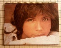 David Cassidy 1974 Greatest Hits LP Sketch by atomicrocketpoplab