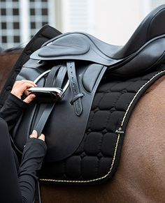 Barn Stalls, Fall Winter, Autumn, Horse Tack, Horse Riding, Dressage, Equestrian, Horses, Animals