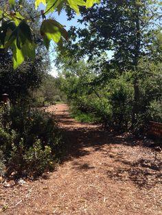 Shipley Nature Center, Huntington Beach