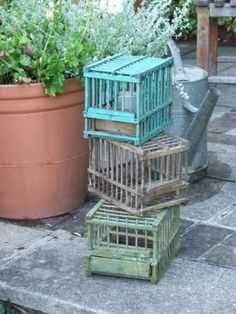 Antique bird cages....but only for decor....don't want to cage any.