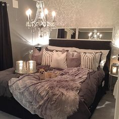 Beautiful bedroom minus that dog though we will put our Australian Shepherd