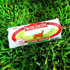 #fromage #chevre #Soignon #buche