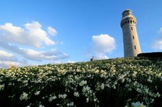 角島灯台は下関市、山口県にあります