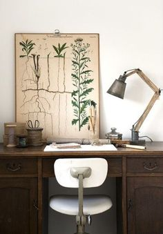 6 Mind Blowing Tricks: Vintage Home Decor Eclectic Mirror vintage home decor inspiration bohemian.Vintage Home Decor Kitchen Display vintage home decor victorian light fixtures.Vintage Home Decor Workspace Inspiration, Home Decor Inspiration, Decor Ideas, Vintage Botanical Prints, Workspace Design, Home Office Space, Desk Space, My New Room, Vintage Home Decor
