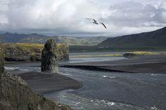 B Whale, Mountains, Amazing, Nature, Travel, Animals, Europe, Viajes, Iceland
