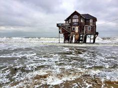 "stranded. (""windjammer,"" mirlo beach, cape hatteras island, north carolina, usa)"