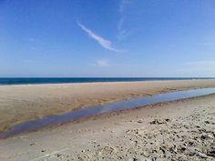 Hurricane Sandy's Sand... (Skyepony)