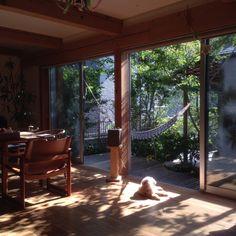 Kojisenさんの、ポチョンちゃん,ウェグナー,北欧,リビング,のお部屋写真