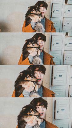 Foto Bts, Bts Photo, Daegu, K Pop, Bts Dogs, Bts Kim, V Bts Wallpaper, Bts Aesthetic Pictures, Park Ji Min