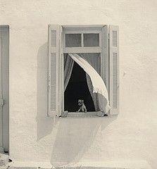 Pentti Sammallahti: Hydra, Greece, 1975