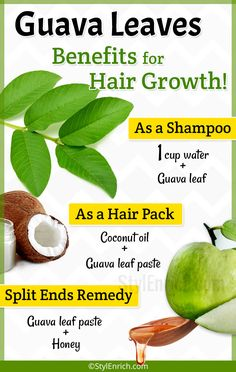 Hair Remedies Guava Leaves for Hair Growth - If you are looking for the natural treatment for getting rid of various hair problems such as hair loss, we bring benefits of guava leaves for hair growth. Biotin For Hair Loss, Oil For Hair Loss, Hair Loss Shampoo, Stop Hair Loss, Prevent Hair Loss, Diy Hair Growth Shampoo, Biotin Hair, Hair Remedies For Growth, Hair Loss Remedies