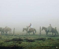 Пока Никита набирался во сне сил я следила как течет суровая но радостная жизнь. Погода соответствовала ощущениям: мелкий дождь неслезающие со склона облака промозглый холод и серость. Мужчины на день уезжали на лошадях перетасовывать по загонам скот. Днем оставались только две женщины с двумя малыми детьми. Все время они проводили на кухне и из маленького окошка похожего на бойницу доносились их громкие грубые голоса. Молодые собаки уходили с мужиками оставался только старый черный пес. Они…